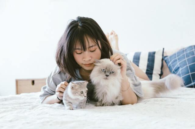 ベッドで猫と遊ぶ女性